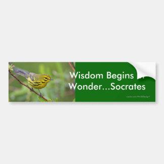 Wisdom Bumper Sticker