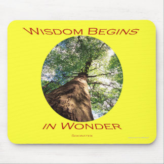 Wisdom Mousepads