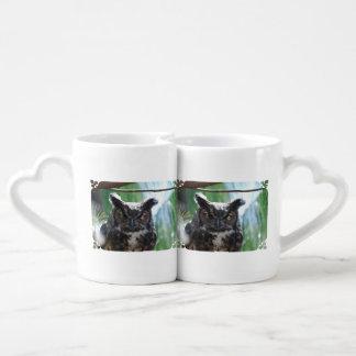 Wise Long Eared Owl Couples Mug