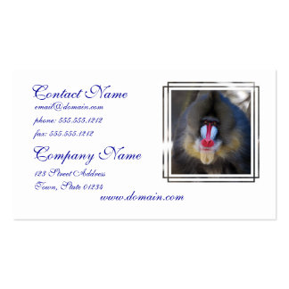 Wise Mandrill Monkey Pack Of Standard Business Cards