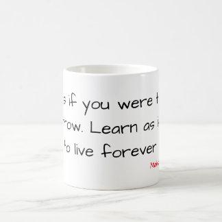 """Wise Mug - """"Live and Learn"""""""