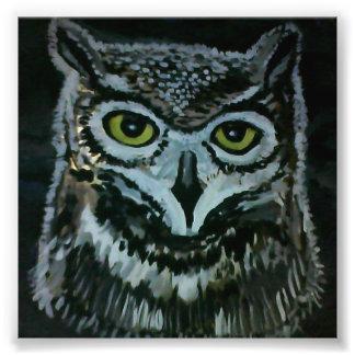 Wise Owl Photo Print
