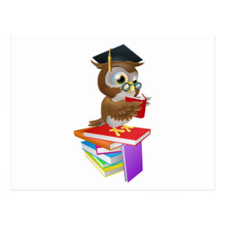 Wise owl reading post cards