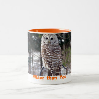 Wise owl Two-Tone coffee mug
