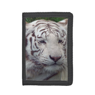 Wise White Tiger Tri-fold Wallets