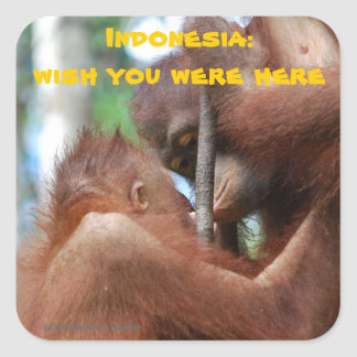 Wish You Were Here from Indonesia Square Sticker