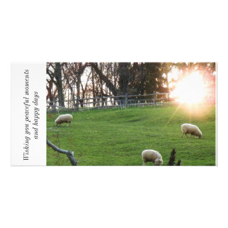 Wishing you peaceful moments and happ... customized photo card