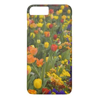 Wisteria and tulips in garden of Dumbarton iPhone 8 Plus/7 Plus Case
