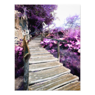 wisteria stairs photograph