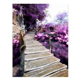 wisteria stairs postcards