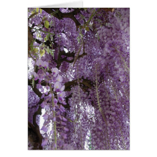 Wisteria Too Card