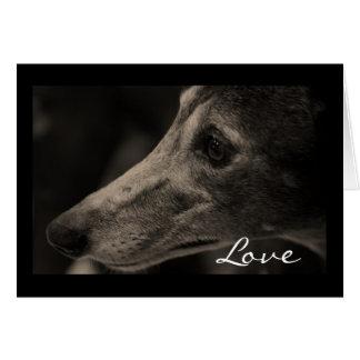 Wistful Greyhound Eyes of Love Greeting Card
