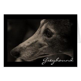 Wistful Greyhound Greeting Card