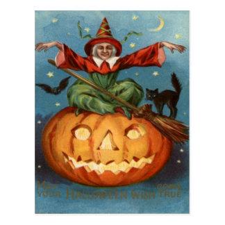 Witch Broom Black Cat Jack O Lantern Owl Postcard