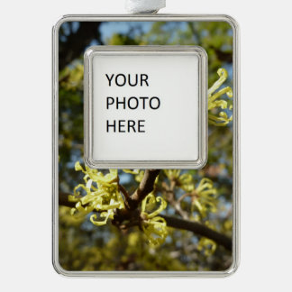Witch Hazel Flowers Silver Plated Framed Ornament