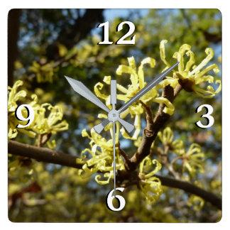 Witch Hazel Flowers Square Wall Clock