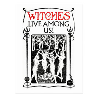 Witches Live Among Us Postcard