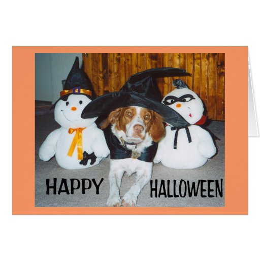 WITCHY BRITTANY GREETING CARD