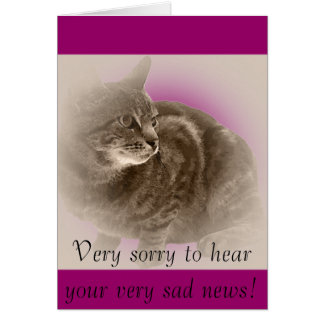 With Sympathy (loss of a cat) Card