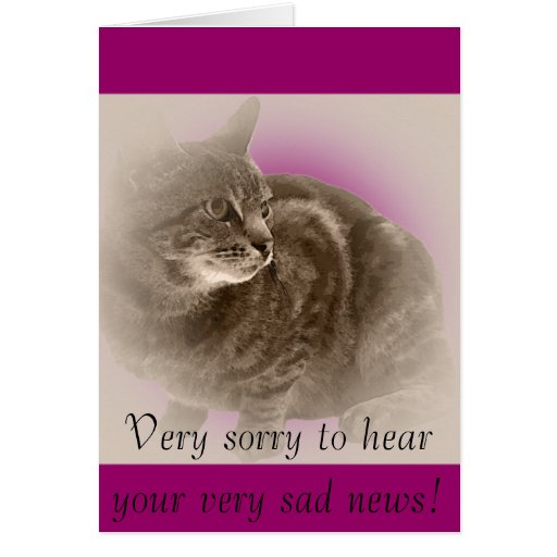 With Sympathy (loss of a cat) Greeting Cards