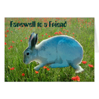 With Sympathy (loss of a rabbit) Greeting Card