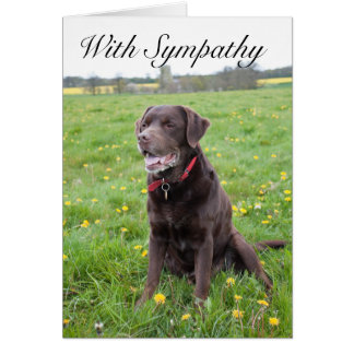 With Sympathy Pet Dog card