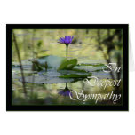 With Sympathy, Simply stated condolences Greeting Card