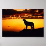 Wofl Sunset Print