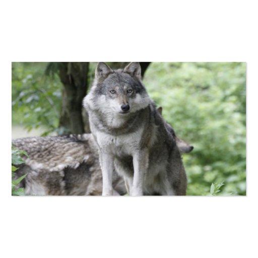 Wolf 14AJ Business Cards