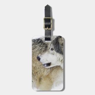 Wolf 2 luggage tag