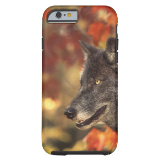 Wolf 2 tough iPhone 6 case