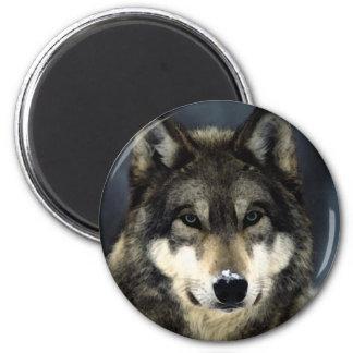 Wolf 6 Cm Round Magnet