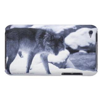 Wolf Barely There iPod Cover