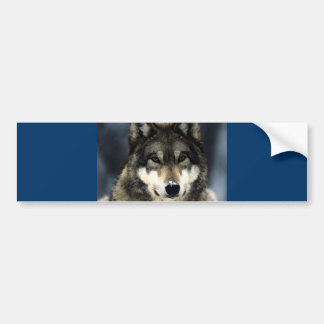Wolf Bumper Sticker