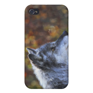 Wolf (Canis Lupus) Case For iPhone 4