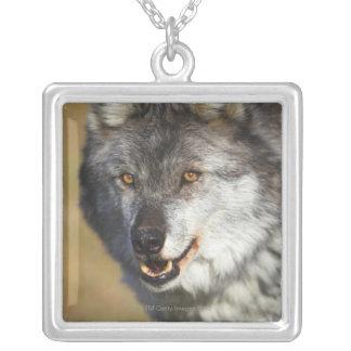 Wolf (Canis Lupus) Pendant