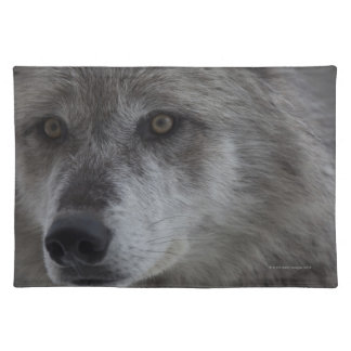 Wolf (Canus lupus) from Yellowstone National Placemat