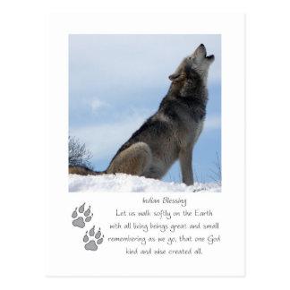 Wolf Christmas Postcard