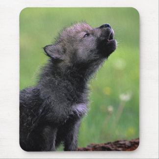Wolf Cub Howling Mouse Mat