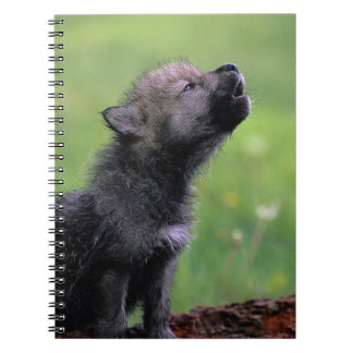 Wolf Cub Howling Notebooks