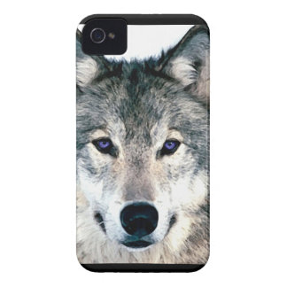 Wolf Eyes in woods wild nature animal Print iPhone 4 Cases