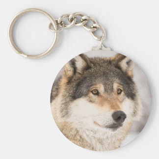Wolf Face close-up Key Ring