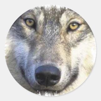 Wolf face close up round sticker
