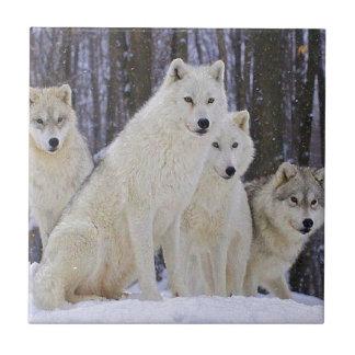 Wolf Family Tile