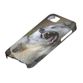 Wolf Fight Case For The iPhone 5