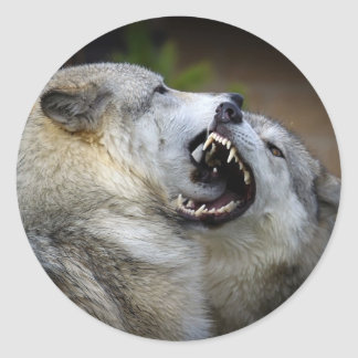 Wolf Fight Classic Round Sticker