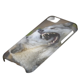 Wolf Fight iPhone 5C Case