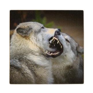 Wolf Fight Wood Coaster