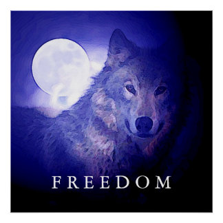 Wolf Fullmoon Square Freedom Poster Print