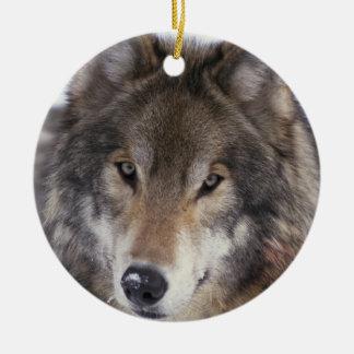 Wolf Gaze Ornament